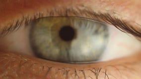 看眨眼睛男性眼睛的特写镜头  在眼珠宏指令的红色动脉 点燃的学生反应 Mioz和Midriaz 股票视频