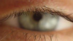 看眨眼睛男性眼睛的特写镜头  在眼珠宏指令的红色动脉 点燃的学生反应 Mioz和Midriaz 股票录像