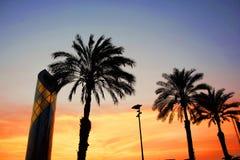 看秘鲁日落thrue棕榈树 免版税库存照片