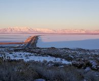 看羚羊的海岛向东 免版税图库摄影