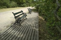 看自然的广场长凳 免版税库存图片