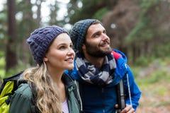 看自然的远足者夫妇在森林里 免版税库存图片