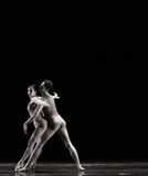 看见意想不到古典芭蕾` Austen汇集` 库存照片