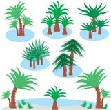 看见有棕榈树的海岛 库存照片