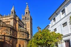 看见的圣母玛丽大教堂 塞维利亚, 免版税库存照片