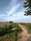 看见的美妙的看法在路在村庄中间 免版税库存图片