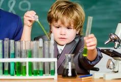 看试管的学生在小学 在实验室学会化学的孩子在学校实验室 ? 图库摄影