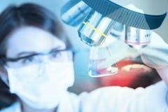 看试管的年轻科学家在实验室里 免版税库存照片