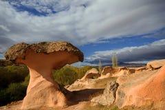 看起来一个蘑菇的火山岩形成在卡帕多细亚 免版税库存照片