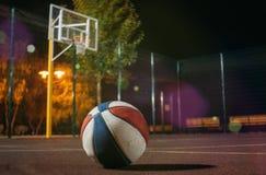 看起来无家可归的滑稽的小猫intrested在与篮子和网的黄色秋天leavesColorfull篮球球 免版税库存照片