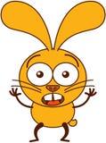 看起来逗人喜爱的黄色的兔宝宝惊奇和惊吓 库存图片