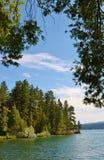 看通过树湖麦克唐纳在蒙大拿 免版税库存照片