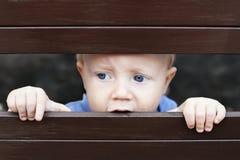 看通过篱芭的小哀伤的男孩 免版税库存照片