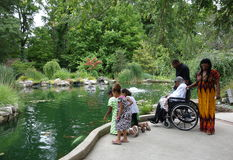 看金鱼的非裔美国人的家庭在池塘。 库存图片