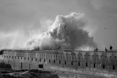 看风雨如磐的海的人们 库存图片