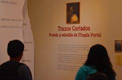 看临时陈列的人们在秘鲁文学的议院, Trazos cortados里 免版税库存图片