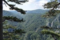 看Raca峡谷 库存图片