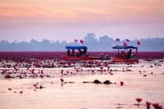 看Th秀丽的小船的乌隆他尼泰国游人  免版税库存图片