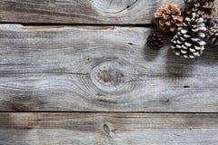真正木头和冷杉球果为自然寒假贴墙纸 免版税库存照片