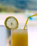 真正柠檬水显示热带夏令时和自创 免版税库存图片