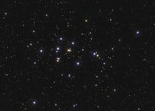 真正的大星团M44或NGC 2632在星座巨蟹星座的蜂箱群北天空的采取与CCD照相机和 免版税库存照片