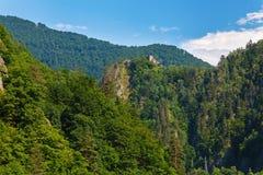 真正的德雷库拉城堡& x28; Poenari Castle& x29; Transilvania,罗马尼亚 免版税图库摄影