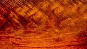 真正的木头有老虎条纹或卷曲条纹五谷, 免版税库存图片