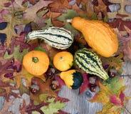 真正的秋天金瓜加上叶子和在土气w的橡子装饰 免版税库存照片