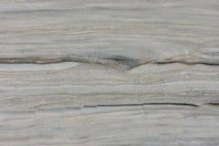 真正的自然'银色风'纹理样式 免版税库存照片