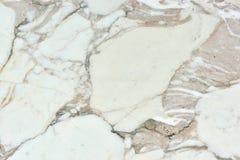 真正的自然'Calacatta金子'纹理样式 库存图片