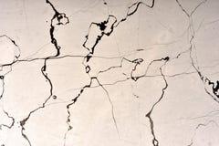 真正的自然大理石Zecevo纹理样式 ?? 库存照片
