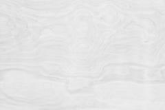 真正的自然白色木墙壁纹理背景 标志蟒蛇 免版税库存图片