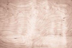 真正的自然白色木墙壁纹理背景 免版税库存照片