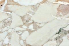 真正的自然Calacatta金子纹理样式 ?? 库存照片