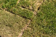真正的草坪包括零件 图库摄影