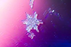 真正的雪花宏观射击从真正的冬天 库存图片