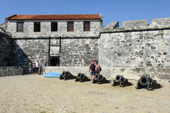 真正的Fuerza Fortless在古巴的哈瓦那 库存图片