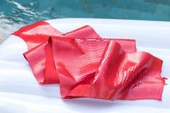 真正Python snakeskin皮革,蛇皮,纹理背景 在背景的游泳池 免版税图库摄影