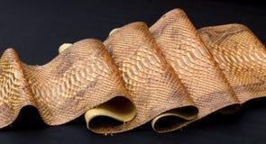真正Python snakeskin皮革,蛇皮,纹理,动物,在黑背景的爬行动物 免版税库存图片