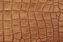 真皮特写镜头纹理,被装饰在棕色爬行动物下皮肤,croco 对现代样式,墙纸或 免版税库存照片