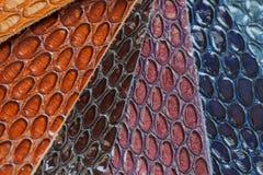 真皮颜色样品,爬行动物异乎寻常的纹理  免版税库存图片