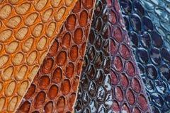 真皮,与纹理的颜色样品在时装业的皮肤异乎寻常的爬行动物下 免版税库存图片