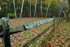 真菌和青苔盖了围拢绵羊哺养的领域的篱芭 免版税图库摄影