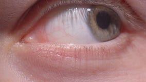 眨眼睛和移动学生的绿色眼睛特写镜头射击向侧面地探索周围 股票录像