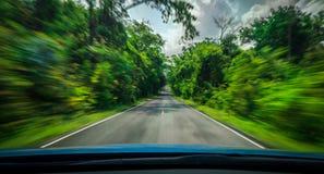 眺望从蓝色汽车和速度在高速公路的行动迷离前方在柏油路的在与树森林的夏天乡下的 免版税库存图片