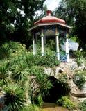 眺望台在一个岩石站立在公园 免版税图库摄影