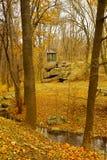 生长在秋天季度的木头的眺望台和树 免版税图库摄影