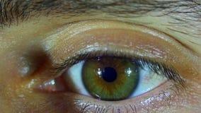 眼珠的眼睛自转 慢的行动 股票录像