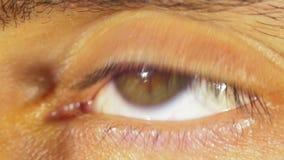 眼珠的眼睛自转 影视素材