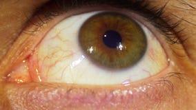 眼珠的眼睛自转 股票视频